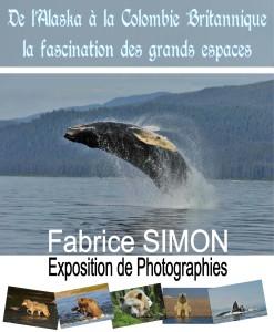 affiche Fabrice SIMON.pub