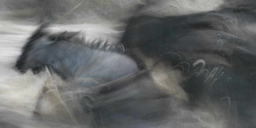 Roberto Bartoloni Photographer - GNU2