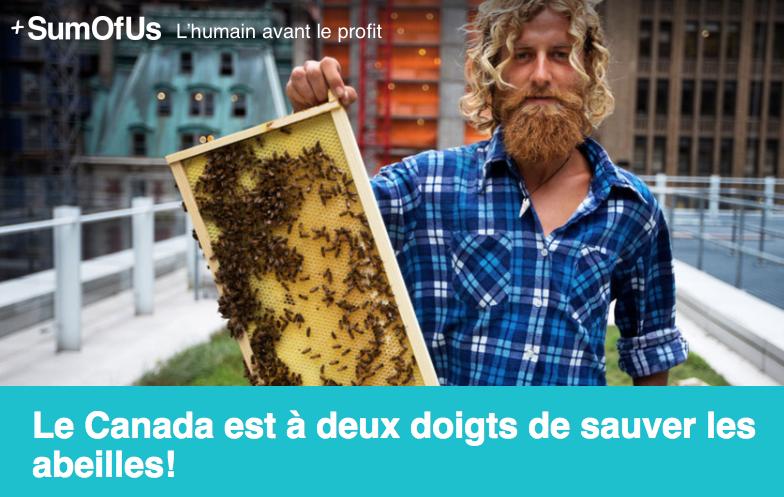 le canada est deux doigts de sauver les abeilles faune sauvage. Black Bedroom Furniture Sets. Home Design Ideas