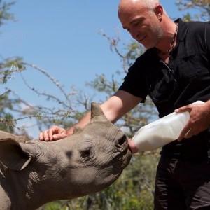 Renaud Rhino noir