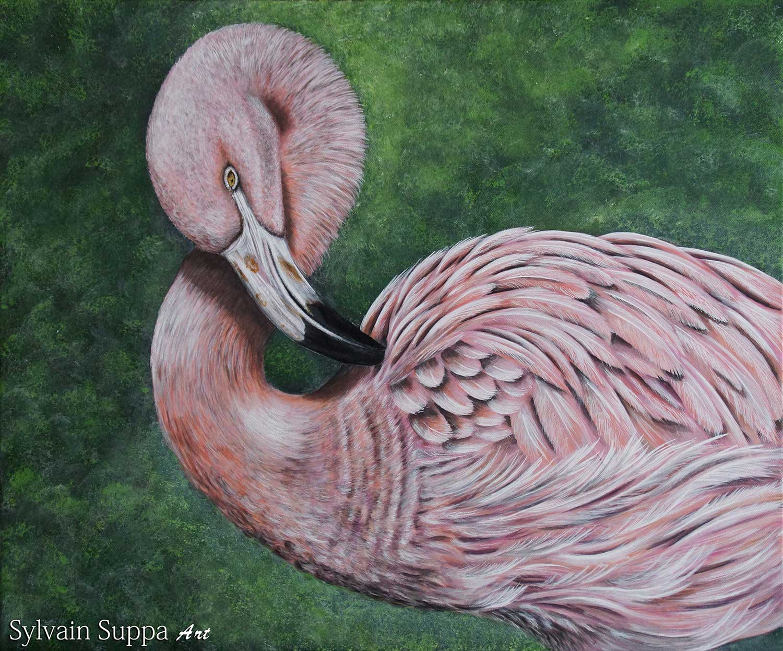 Flamant Rose Peinture Acrylique Sylvain Suppa Art Faune Sauvage