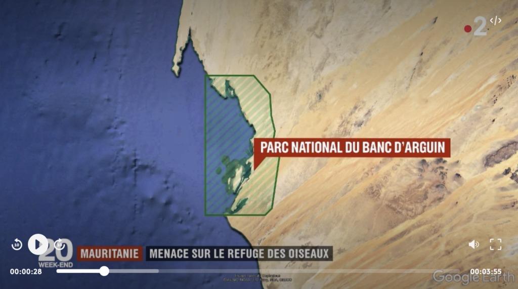 Mauritanie Menace Sur Le Refuge Des Oiseaux Faune Sauvage